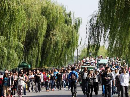 历年春节西湖人流量统计及意义